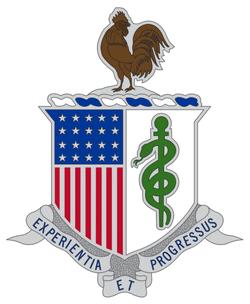 AMEDD insignia